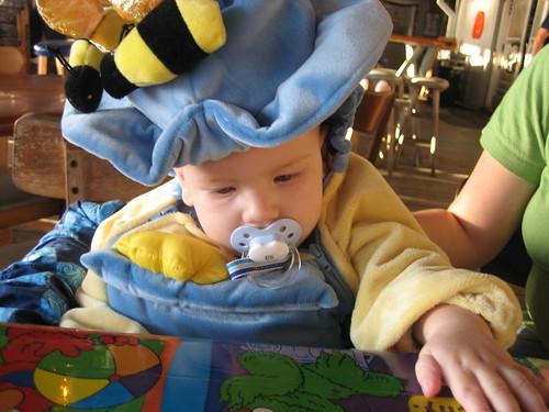 Eli as a pot of honey
