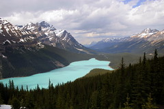 Peyto Lake - Banff National Park - Canada ({ Planet Adventure }) Tags: holiday canon photography eos photo interesting photographer ab adventure stunning planet incredible allrightsreserved interessante digitalphotography holidayphotos aroundtheworld stumbleupon copyright travelguide beautifulplaces digitalworld intrepidtraveler allaround traveltheworld planetadventure colorfulworld worldexplorer wonderfulplaces amazingphotos by{planetadventure} byalessandrobehling intrepidtravel alessandrobehling stumbleit topphotography holidayphotography alessandrobehling copyright20002008alessandroabehling colorfulearth photographyhunter photographyisgreatfun
