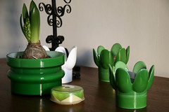 (sandra juto) Tags: wood white green home glass table plastic candleholder diningtable hyacinth coasters alsterfors myeverydaylife royalkrona postrm