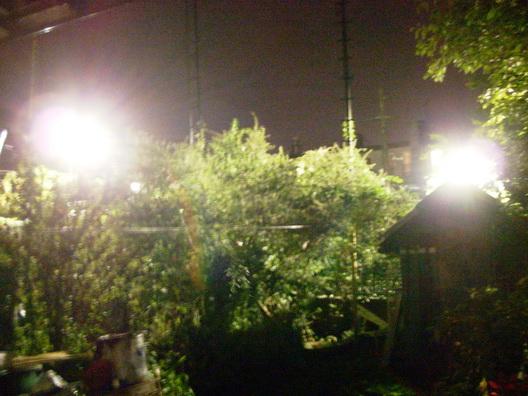 162ParkingLot-Lights