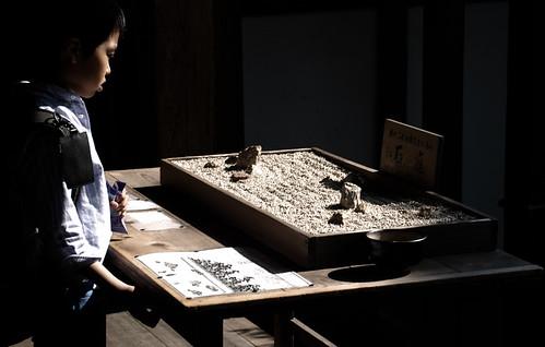 Oro y piedras. Templos (1). Kyoto Tales (2)