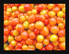 fresh tomatoes (Z Eduardo...) Tags: red frutas colors yellow asia market tomatoes tomates mercado laos vegetales paske mywinners colorphotoaward diamondclassphotographer