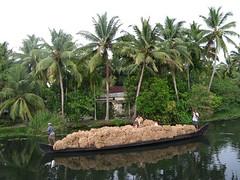 Kerala Backwaters (fransglobal) Tags: india kerala backwaters