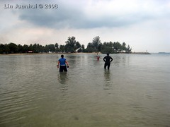 IMG_4122 intertidal wading