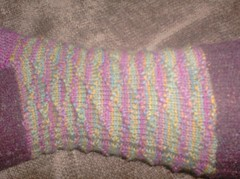 Carnivale du Printemps Socks - Leg detail