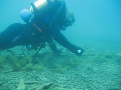 chuck uw dd 07 (omnidivers) Tags: crescentlake dragerdolphinrebreather underwatertechnologies