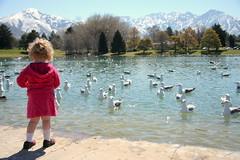 Goodbye Duck Pond