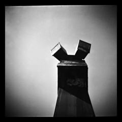 Diana No. 25 (Ralph Krawczyk Jr) Tags: sky blackandwhite film all © lofi diana rights diafine lightpost reserved annarbormichigan crappyasscamera aristaeduultra100 120mediumformat rckrawczykjr ralphkrawczykjr 04142008