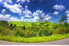 . Somewhere in Alagoas [2] (Omar Junior) Tags: blue sky cloud color tree verde green colors azul clouds cores landscape plantas pentax d vivid paisagem cu fisheye junior nuvens arvores omar ist cor pentaxistd alagoas 17mm