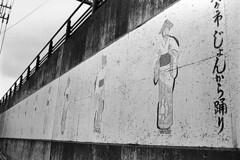 長山洋子 画像7