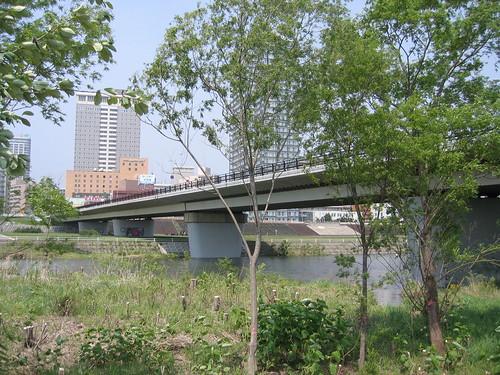 河底下綠地看橋