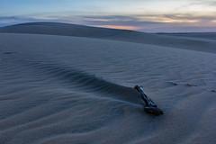 Wind formation (alvinpurexphotography) Tags: ngc sanddunes ksa sauditurism saudi lifeinsaudi landscape