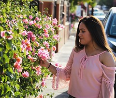 🌸🍃 (LM PHOTOGRAPHYY) Tags: exposure contrast sunlight nikcollection canon girl look fashion style modeling model portrait photography photoshoot naturephotography view sun rose green plants flowers pale nature