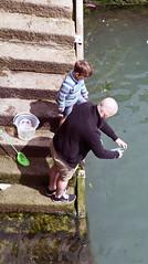 Crabbing with Dad. (MWBee) Tags: padstow cornwall crabbing ladanddad steps water mwbee nikon d750 seaside outdoor bald net bucket