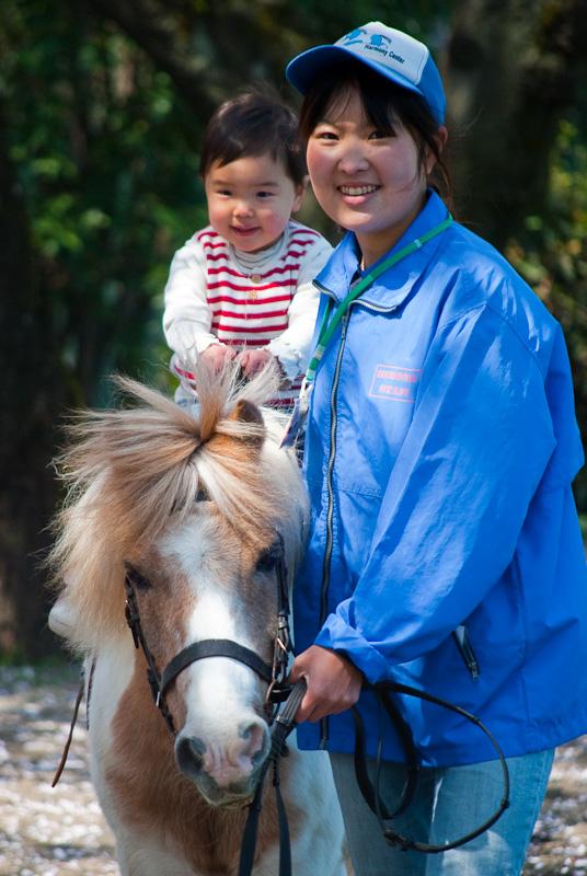 Baby Sakura Horse_8185