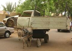 Donkey truck
