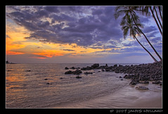 Sharing A Sunset With A Honu (Sea Turtle) (Mellard) Tags: ocean trees sunset sea seascape hawaii coast turtle palm honu bigisland seaturtle hdr themoulinrouge 5xp diamondclassphotographer mellard
