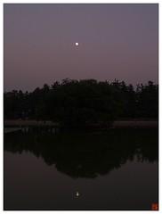 Today's Photo 071024 #01