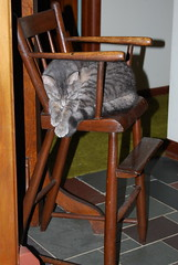 Highchair (saunamamo) Tags: sleeping cat antique highchair socute quiettimes thepetswelove twtmesh380716 0110sh10