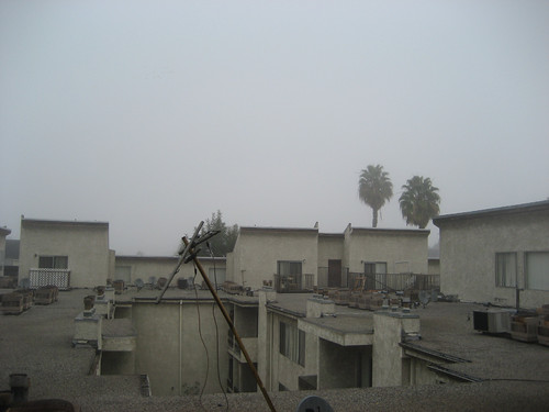fog-roofview-north