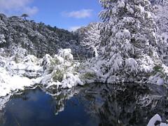 Reflections (Phillie Casablanca) Tags: chile travel lake snow mountains southamerica reflections view lakedistrict adventure adventuretravel roundtheworldtrip huerquehue parquenacionalhuerquehue