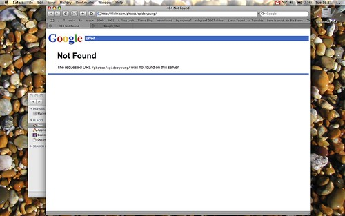 Have Google Bought Flickr?