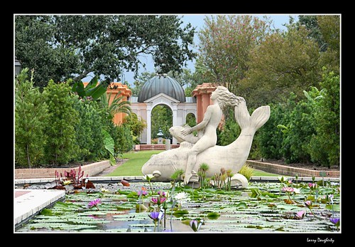 Botanical Garden Lily Pond and Statue