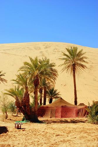 MERZOUGA-SAHARA-2008 698