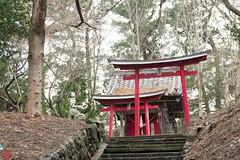IMGP5538-11 (zunsanzunsan) Tags: 下日枝神社 山王森梅林 日和山 日枝神社 梅 神社 酒田市