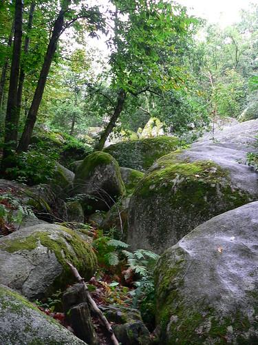 Sidobre - Rivière de rocher