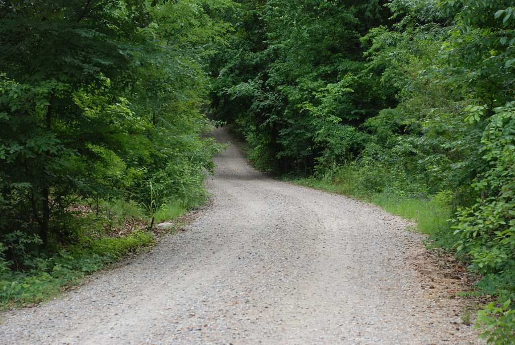 the gravel road driveway