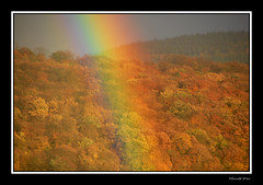 Looking through a rainbow (harald_kirr) Tags: autumn trees reflection rainbow colorful colours dynamic bright vibrant vivid heidelberg brilliant fascinating evocative germnay kirr scintillating aplusphoto orthon colouricious colourartaward thegoldenmermaid theperfectionaward