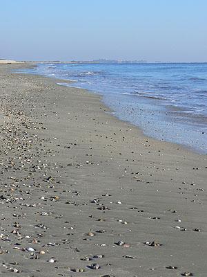 la plage....jpg