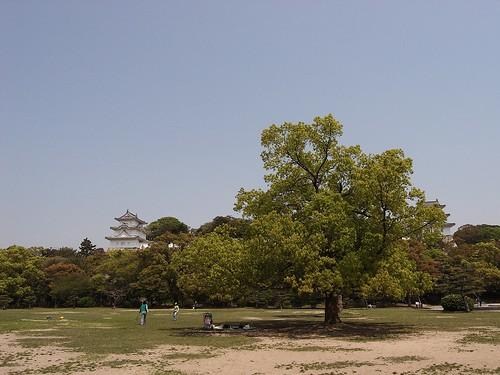休日の明石公園