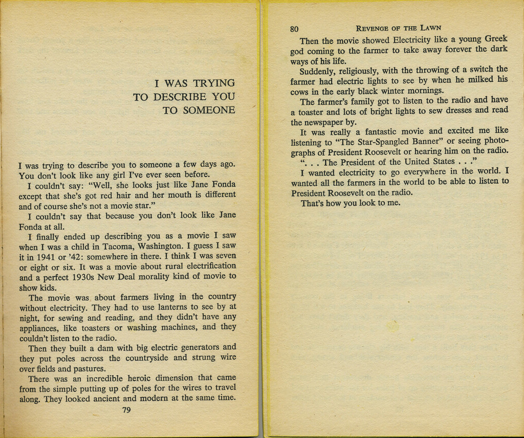 literary work brautigan