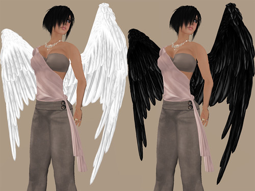 Illusions - Angel Wings Folded