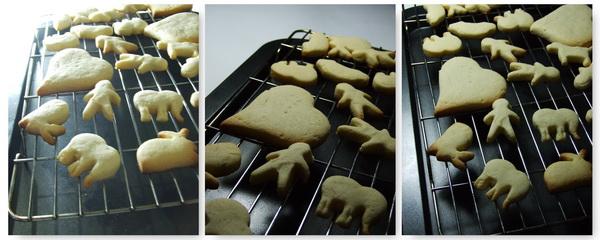buttercookiesanimal