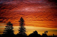 Sunset at New Plymouth (hapulcu) Tags: newzealand nz northisland taranaki