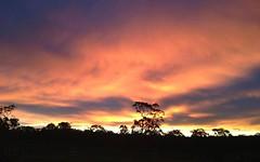 330 Bruce Crescent, Wallarah NSW