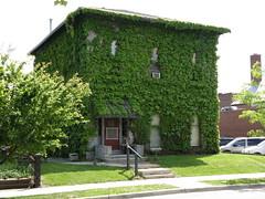 Green House 1 (Hammer51012) Tags: geotagged ivy greenhouse tippecanoecounty lafayetteindiana sp570uz