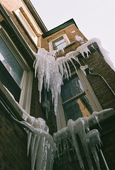 Swords Of Damocles (richardknaus) Tags: winter usa wickerpark chicago cold ice weather america illinois olympus inverno icicles om2 damocles swordofdamocles richardknaus