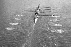head of the charles regatta (carrie227) Tags: cambridge boats boat massachusetts charlesriver newengland crew regatta headofthecharles bostonist pointandclick universalhub barbash carriebarbash