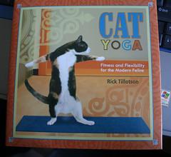Cat Yoga 102907