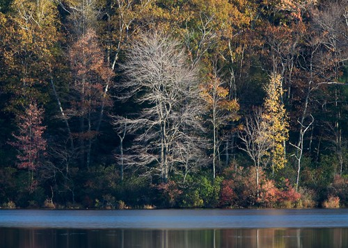 Afternoon light on Gritman Pond