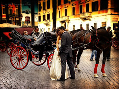 An Italian Wedding, Rome (Christopher Chan) Tags: travel wedding italy horse rome bravo europe sony piazzadispagna cart spanishsteps f717
