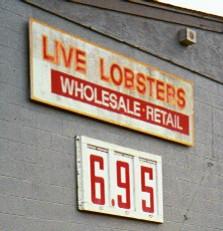 boston_lobsters