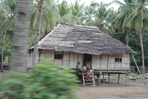 Traditional house in Flores.