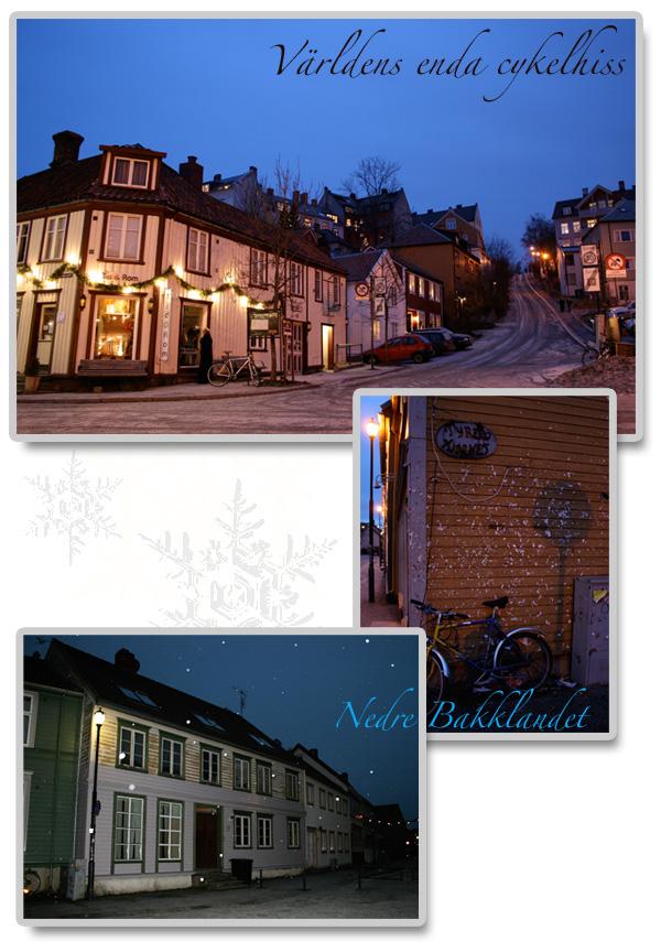 Trondheim_3