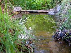 3a   Footbridge over stream
