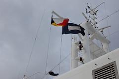 Flags (Johnh111003) Tags: holland netherlands docks rotterdam nikon flags quay communication aurora po cruiseship nautical quayside cruiseliner nieuwemaas katendrecht rijnhaven hollandamerikakade johnh111003